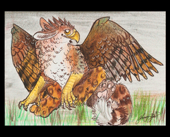 ACEO-Baby gryph by SunStateGalleries