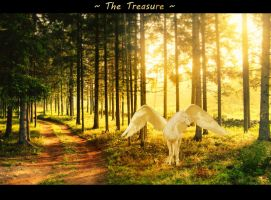 The Treasure by saphiraly