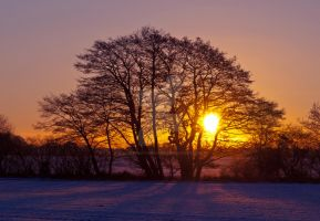 Winter Sunrise Yorkshire by davepphotographer