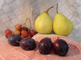 Fruit Composition 15 by SanStock