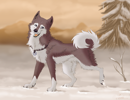 Dusty in the Snow by hecatehell