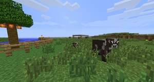 Moved Cows to new pen by Umbreon-Fan-4