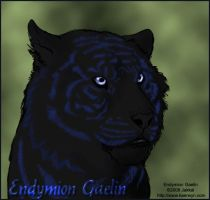 Endymion the Indigo Tiger by JakkalWolf
