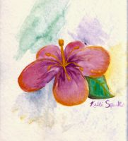 Watercolor Hibiscus by GreenChikin
