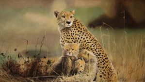 Cheetah with her cubs by Vijay-Artman