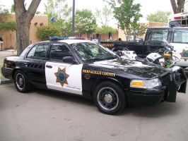 Bernalillo County Sheriff by wastemanagementdude