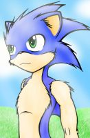 Anthro Sonic by TheEternalFlare