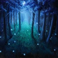 Firefly Forest by crazycolleeny