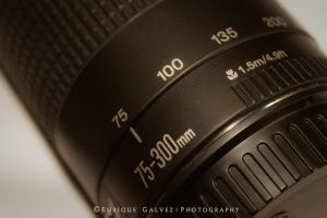 Canon 75-300mm Lens by galvezenrique95