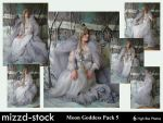 Moon Goddess Pack 5 by mizzd-stock