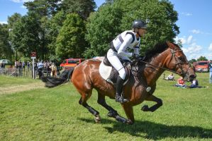 3DE Cross Country Ingrid Klimke FRH Escada by LuDa-Stock
