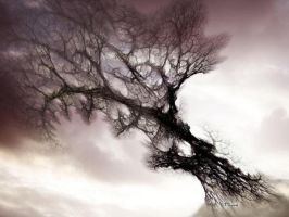 mystical tree by stacy reed by worlithe