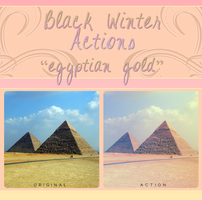 Black Winter Actions - Egyptian Gold by blackxwinter