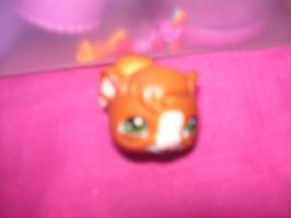 LPS Figure #011 Guinea Pig by GoshyYoshi