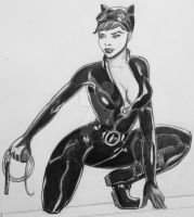 Selina on the prowl by TheRiotRanger