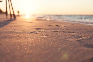 beach bokeh by Lain-AwakeAtNight