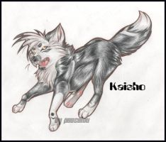 Kaisho For Wolf-Lion by Pascalou