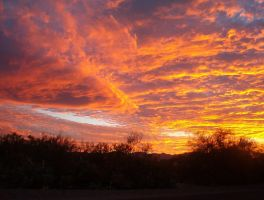Arizona Sunset 082 by PatGoltz