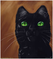 Hollyleaf by ashkey