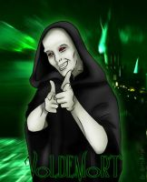 The Dark Lord Voldemort by Harry-Potter-Spain