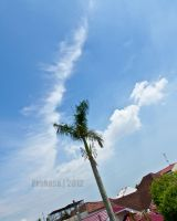 Cloud Formation 01 by djinsakhaw