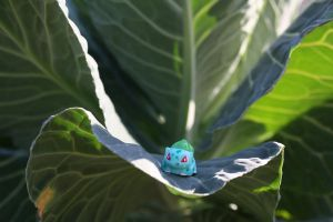 Bulbasaur on Cabbage Leaf by thelastpterodactyl