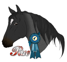 Rue First Place by Rising-High-Ranch