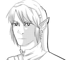 LINK by WildCards