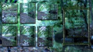 Forest river set wicasa-stock by Wicasa-stock