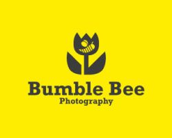 Bumble bee Photography by chris3290