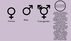 Insert Edgy Title about Non-Binary Genders by MyLittleTripod