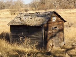 Old storage shed ~ by runninglane