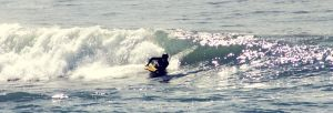 Body Boarder by LizThatsMe