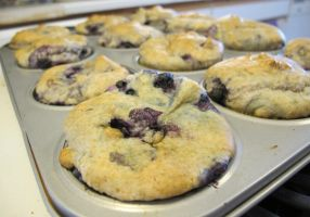Gluten-Free Wild Blueberry Muffins 1 by Windthin