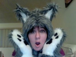 Custom Grey Wolf Dog Hood and Paws! by Lady-with-a-buzzsaw