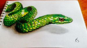 Green tree snake by WolfOfHorror