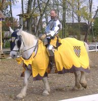 Yellow Knight 2 by akirastock