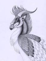 Persian Griffin by verreaux