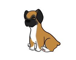 Boxer Puppy by OkayIlie