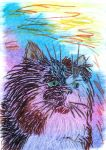 Oil Pastels: THAT Cat by kxeron