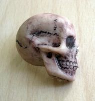 Anatomical skull pin by rude-and-reckless
