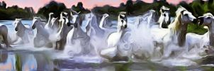 white horses by angelx7