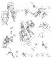 Spider-Man sketches by Inkthinker