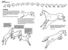 Horse Jumping Tutorial by sketcherjak