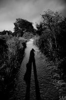 My Shadow is Taller Than Me by SpencerMears