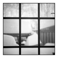 2015-068 Snow grid by pearwood