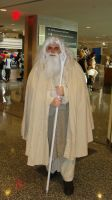 Gandalf the White Youmacon2010 by Chaosgamer137