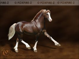 WIP - Welsh Cob by Foxfire-Z