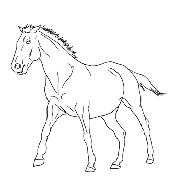 Canter lines PUBLIC DOMAIN by Allicorn