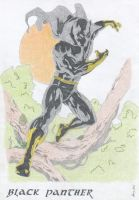 Black Panther by Xeraton